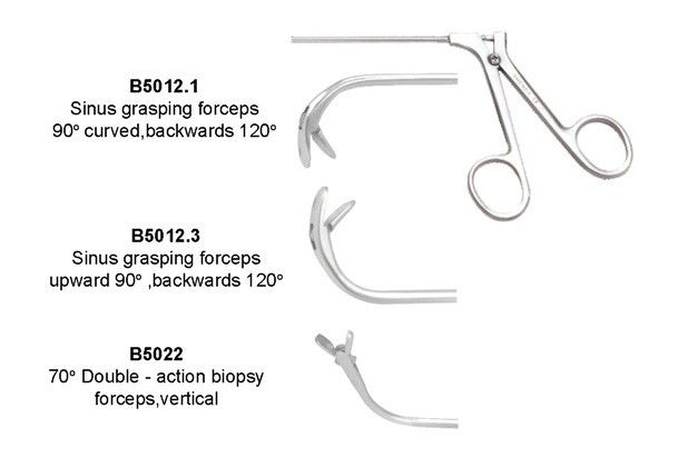 40° Flat ball head biopsy forceps